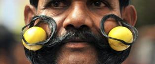 Cette moustache qui donne du panache